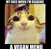 Best Vegan Memes ~On Board Vegan #VeganMeme #Vegan #Vegetarian #Food #GoVegan #Animals #Dairy #Meat #VeganFood #PlantBased #Eggs #Chickens #Cattle #Cows #Milk #AnimalRights #Thanksgiving #BackyardChickens #Turkey #VeganDiet #HappyThanksgiving #Meme #Funny #LOL  #Anime #Manga #fun #Gif #cute #Cosplay #Humor #weather #league #bowling #BowlersMart #MakeTheShot #NinjaStars #cosplayer #funnyphoto  #Joke #DragonBallZ #DragonBallSuper