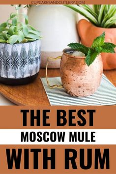 If you love a Moscow Mule, you'll love this version with Rum! Spiced Rum gives it tons of flavor that make this recipe extra delicous! Still super quick and easy, this is a Mule recipe you must try! Moscow Mule With Rum, Best Moscow Mule, Copper Moscow Mule Mugs, Copper Mugs, Moscow Mule Variations, Non Alcoholic Drinks, Beverages, Cool Mom Style, Mule Recipe