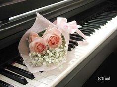 You find yourself in the market for a best home digital piano. How can you successfully find a best home digital piano, that also won't cost you the earth? Piano Brands, Listen To Your Gut, Digital Piano, All About Music, Thing 1, Piano Keys, Romantic Pictures, Pink Petals, Music Pictures