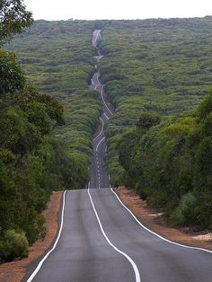 Road on Kangaroo Island, South Australia on the way to Remarkable Rocks.