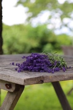 Fruit, Travel, Wine Country, Lilac Flowers, Harvest, Viajes, Lawn And Garden, Destinations, Traveling