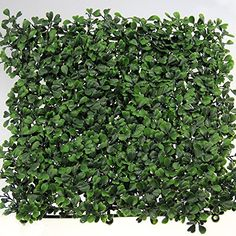 33 Sq.ft Faux Boxwood Privacy Fencing Screen 20''x20''x2'' Artificial Boxwood Hedge Mat, http://www.amazon.com/dp/B00NIM7YU6/ref=cm_sw_r_pi_awdm_zcHZvb080VY36