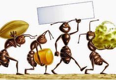 #formiche #rimedinaturali #peperoncino #chiodidigarofano #cannella #menta #caffè  Tutto cominciò...: Rimedi Naturali contro le formiche