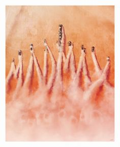 Mad Max: Fury Road by Andy Fairhurst