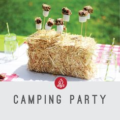 camping party  camping party in a box  smores cake pops  hay bale  gingham   mason jars