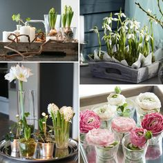 Haal het voorjaar in huis met een dienblad met voorjaarbloemen en -bollen Spring Flower Arrangements, Floral Arrangements, Diy Flowers, Spring Flowers, Table Centerpieces, Table Decorations, Spring Projects, Spring Bulbs, Flower Art