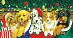 """Stocking Puppies 500 piece Jigsaw Puzzle    SunsOut Puzzles will provide a challenge for one and all.    Perfect for collectors to mat and frame.    Art by Linda Picken    Size: 29"""" x 15""""    Made in the USA, by SunsOut.    Eco-Friendly, Soy Based Inks & Recycled Board.    Consumer Product Safety Notice:  WARNING: CHOKING HAZARD  Small parts Not for children under 3 years SO52626  Regular price: $12.00  Sale price: $10.80"""