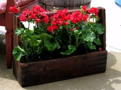 Easy garden projects from recycled wood Kirk Willis's tool boxed all stained
