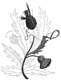 free hand embroidery design – Scotch Thistle.