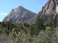 Pine Creek in Red Rock Canyon Las Vegas
