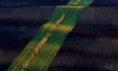 Pro vlastníky orné půdy – Tvoříme zdravou krajinu