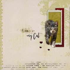Love my Cat - My pages with Jopke Digital Art's products - Gallery - Scrap Girls Digital Scrapbooking Forum