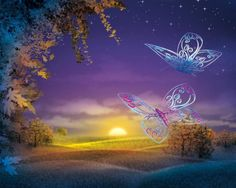 Free desktop wallpapers and backgrounds with Magical Sunset, abstract, butterfly, fantasy, sunset. Wallpapers no. Butterfly Background, Butterfly Wallpaper, Butterfly Art, Sunset Wallpaper, Nature Wallpaper, 3d Wallpaper, Letting Go Of Someone You Love, Renaissance, Beautiful Butterflies