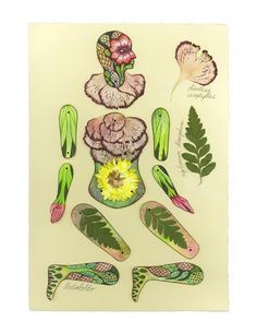 arcimboldo paper doll by imaginerie on Etsy, $5.00