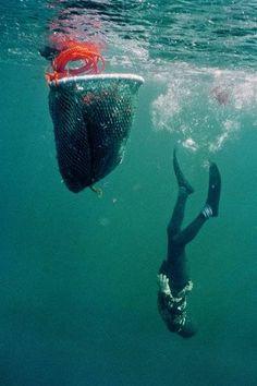 Rarefied Haenyeo (female divers) by David Høgsholt