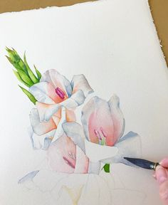 I've done a little more of this gladiolus painting. These are proving to be a bit of a challenge. I was questioning my ability earlier and then a 'waspy' type of buzzing insect came into my painting room and landed on one of the flowers I was painting. It boosted my confidence a little . #aquarelle #aquarellepainting #flowerpainting #watercolor #watercolour #watercolorpainting #watercolorartist #watercolourart #dailyart #artfollow #waterblog #gladiolus #botanicalart #botanicalillustration…