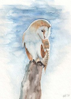 Frosty Barn Owl Tyto Alba Watercolor Print by OnlyPrettyThings