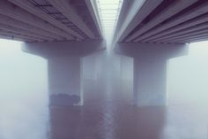Foggy under the bridge.