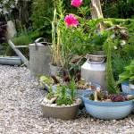 Aging things to make them look old can give your garden an antique and timeless look that many gardeners crave. Here are some things to try, aging metal terraco