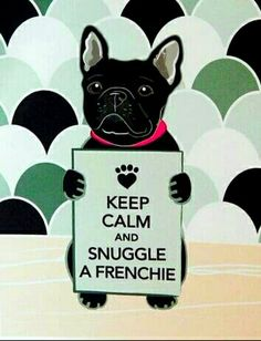 We love Frenchie snuggles! bullymake.com/