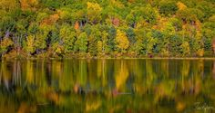 Fall Reflections - null Reflection, Landscapes, Fall, Autumn, Paisajes, Fall Season, Scenery