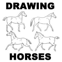 Horses are so beautiful and graceful and are really very popular to learn how to draw. This is an entire page full of drawing lessons for how to draw horses...walking, trotting, running, standing, etc. If you want to learn how to draw horses in movement and in all different types of poses...this is a great drawing tutorial for you.