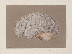 Brain Anatomy. Paper Embroidery. Anatomical by FabulousCatPapers