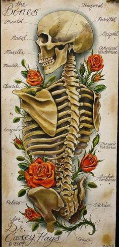 flowers, anatomy, and skeleton image