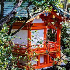 おはようございます  #神社#shrine #冬#winter #風景#自然#景色#picture#landscape#nature #東京#日本#tokyo#japan#love#loves_nippon #写真好きな人と繋がりたい