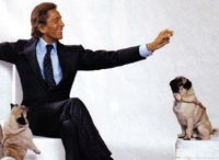 Valentino and his pugs  celebrity pug owners