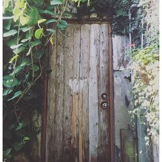 Photo from letterdameog Natural, Garden, Photography, Instagram, Photograph, Lawn And Garden, Gardens, Photo Shoot, Outdoor