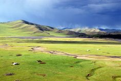 Mongolian steppe - , North Hangay