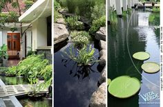 #green oasis