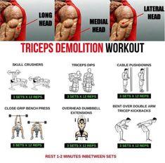 Triceps Demolition Workout! Hardcore Arm Training - Yeah We Train !