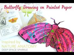 Butterfly drawing project inspired by Julia Rothman's Nature Anatomy Group Art Projects, Paper Art Projects, Easy Art Projects, Project Ideas, Art Activities For Kids, Art For Kids, Art Children, Kids Crafts, Spring Art