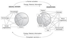 Ecosystem Diagram | Human Interaction With Ecosystem