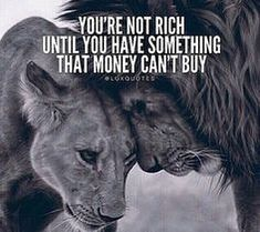 Wisdom Sayings & Quotes QUOTATION – Image : Quotes Of the day – Description You're not rich until you have something that money can't buy Sharing is Caring – Don't forget to share this quote with those Who Matter ! Positive Quotes, Motivational Quotes, Inspirational Quotes, Positive Mind, Positive Vibes, Lion Quotes, Animal Quotes, Money Cant Buy, Warrior Quotes