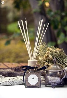 Reed Fragrance Diffuser via Etsy