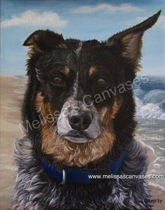 """""""Toby at Nags Head"""" Oil on canvas.  14x11.  Commissioned."""