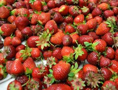 Fresh strawberries from Dartmouth, MA