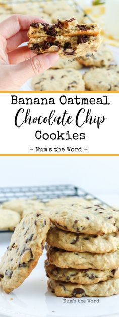These Banana Oatmeal Cookies with chocolate chips are so good we eat them for Breakfast AND Dessert! Imagine the flavors of banana bread, oatmeal cookies and chocolate chip cookies all rolled into one? Is your mouth watering yet, because mine is! Banana Oatmeal Chocolate Chip Cookies, Chocolate Chips, Amazing Cookie Recipes, Best Dessert Recipes, Choc Brownie Recipe, Chicolate Chip Cookies, Banana Dessert, Fun Baking Recipes, Banana Recipes