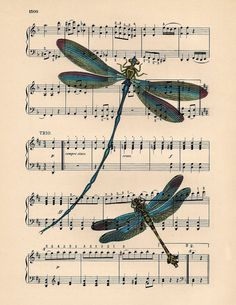 Dancing to the music DRAGONFLY ART on antique music page DRAGONFLY art dictionary book page art print antique dragonflies