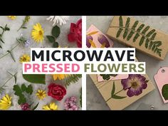 Learn How to Press Flowers...In the Microwave!   How to Press Flowers