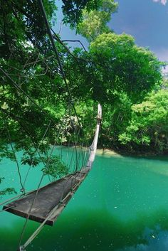 Footbridge, Toledo, Belize. I would totally walk this!!!.......I know, I am seriously nuts =0) LIVE LIFE!!!