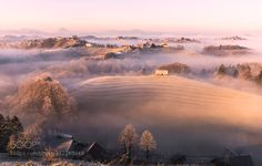 December morning by DaniTurnek. Please Like http://fb.me/go4photos and Follow @go4fotos Thank You. :-)