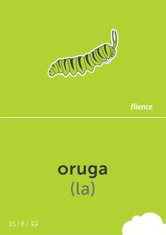 Oruga #flience #animal #insects #english #education #flashcard #language Spanish Flashcards, German Language, Insects, English, Animal, Education, Website, Free, Design