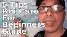 Koi Care For Beginners 5 Tips Guide Koi Fish Pond, Guys, Youtube, Sons, Youtubers, Boys, Youtube Movies