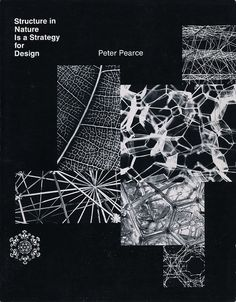 Structure in Nature is a Strategy for Design, Peter Pearce