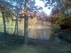 Millcreek park lilly pond. Youngstown ohio