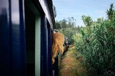 Caminhada por terras de Sicó - Viagens à Solta Trekking, Plants, Happy Moments, Drop, Walking, Traveling, Planters, Hiking, Plant